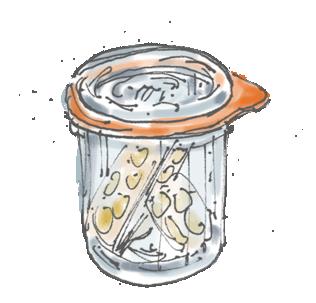 Le autoproduzioni come pratica di libertà: I fermentati